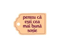 sotie_mica